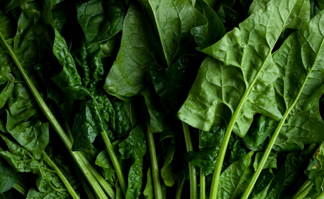 Field to Feast: Spinach