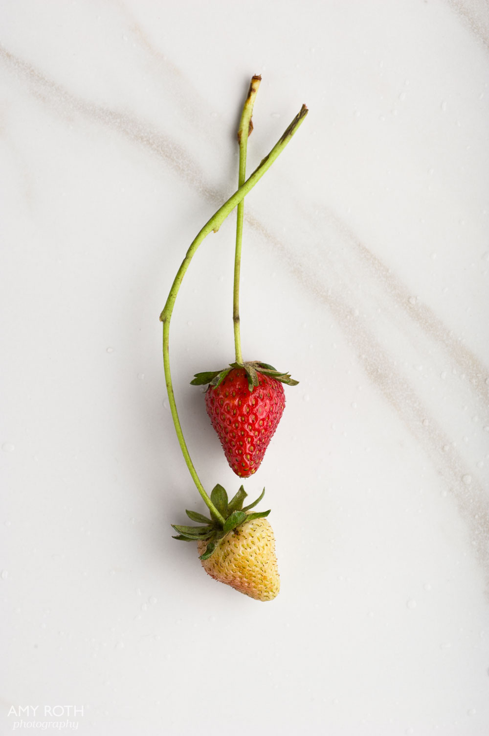 Strawberry Portrait at Minimally Invasive