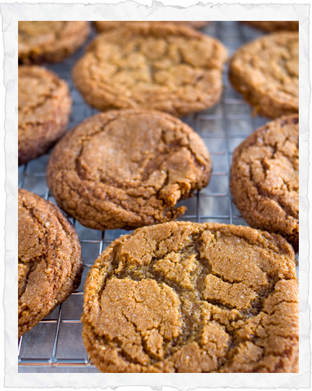 Oh, my — soft, spicy molasses cookies. I'll bet these would be ...